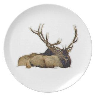 Resting bull elk plate