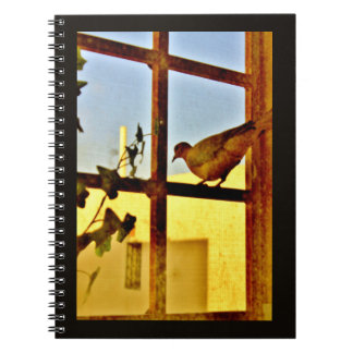 Resting Dove Notebook
