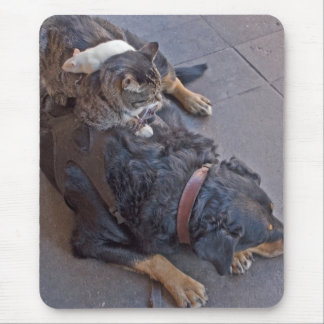 Resting Easy Mouse Pad