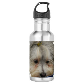 Resting Havanese Dog 532 Ml Water Bottle