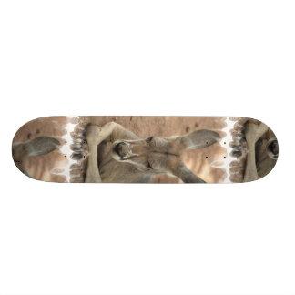 Resting Kangaroo Skateboard