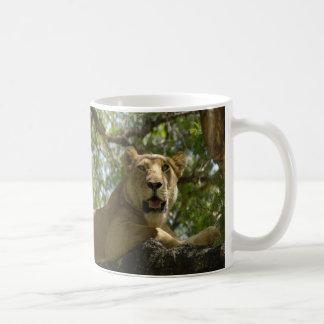 Resting Lioness Coffee Mug