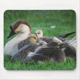 Resting Mouse Pad