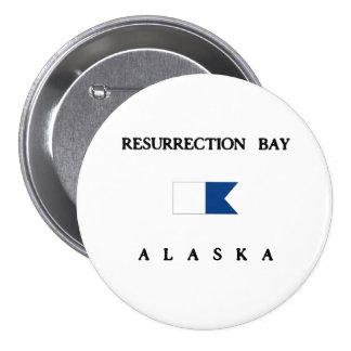 Resurrection Bay Alaska Alpha Dive Flag Button