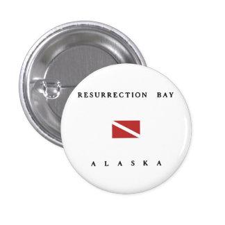 Resurrection Bay Alaska Scuba Dive Flag Buttons