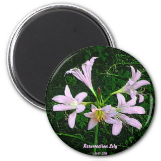 Resurrection Lily 6 Cm Round Magnet