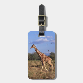 Reticulated Giraffe Luggage Tag