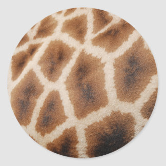 Reticulated Giraffe Pattern Wild Animal Print Gift Round Stickers