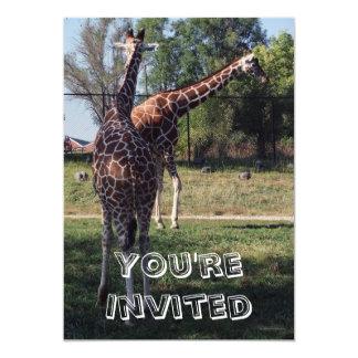 "Reticulated Giraffes Kids Birthday Party Invites 5"" X 7"" Invitation Card"