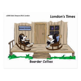 Retired Border Collies Funny Offbeat Cartoon Gifts Postcards