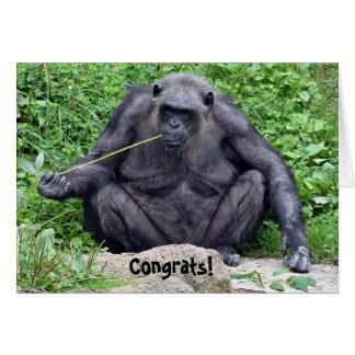 retirement-chimpanzee on rock card