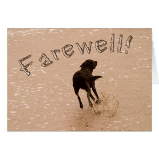 Retirement Farewell Running Labrador on the Beach Card