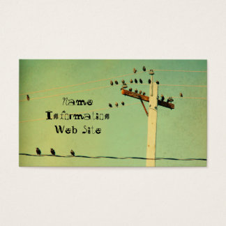 Retro Birds Business Card