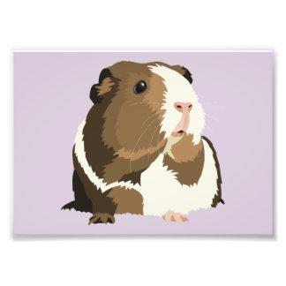 Retro Guinea Pig 'Betty' Print (Frames Available!) Photo