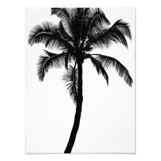 Retro Hawaiian Tropical Palm Tree Silhouette Black Photo Art