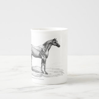 Retro horse muscle anatomy picture tea cup