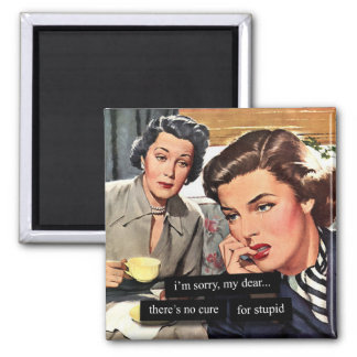 "Retro Housewife ""There's No Cure for Stupid"" Magnet"