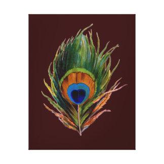 Retro Peacock Feather Canvas Print