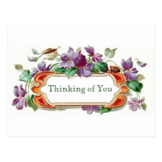 Retro Style Thinking of You Vintage Floral Violets Postcard