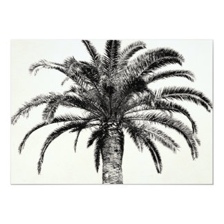 Retro Tropical Island Palm Tree in Black and White 13 Cm X 18 Cm Invitation Card