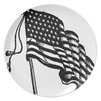 Retro Vintage American Flag Plate