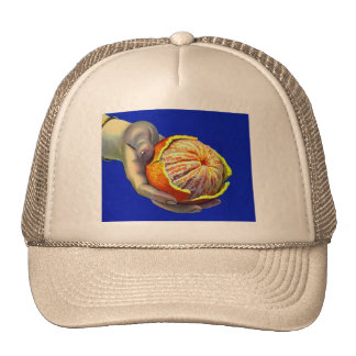 Retro Vintage Kitsch Orange Slices Anyone? Trucker Hat