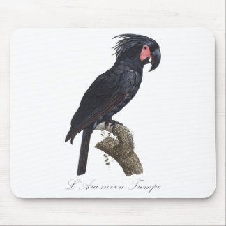 Retro Vintage Palm Cockatoo - Exotic Bird Mouse Pad