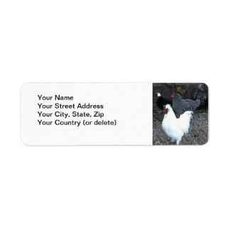 Return Address Label: Chickens Return Address Label