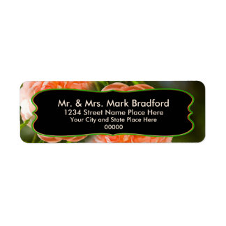 Return Address Labels - Peach Rose Collection