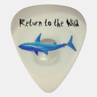 Return to the Wild Plectrum