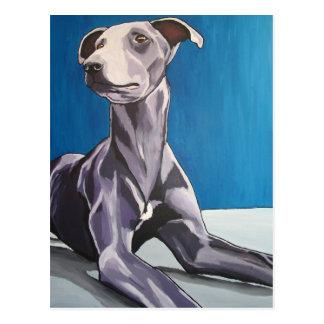 'Reuben Bluedog' - lurcher Postcard