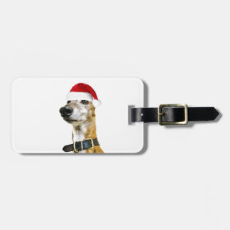 Reuben Claws Luggage Tags