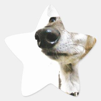 Reuben Claws Star Sticker
