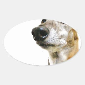 Reuben Claws Oval Sticker