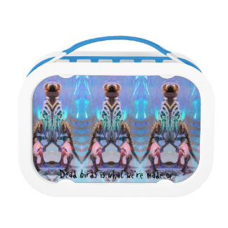 Revolution Child, Uranus & Oracle' Lunch box