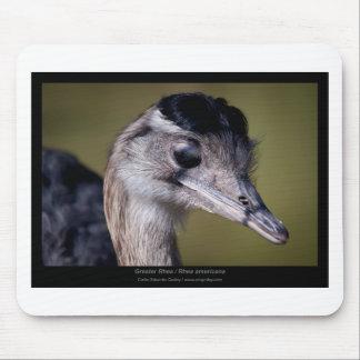 Rhea americana - Greater Rhea 01 Mouse Pad
