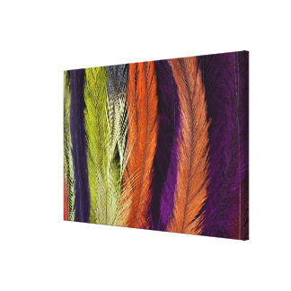 Rhea Feather Abstract Canvas Print