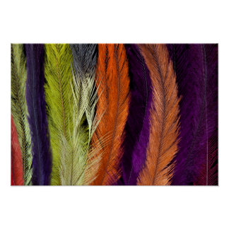 Rhea Feather Abstract Poster