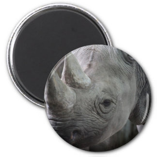 Rhino Facts Magnet Magnets