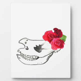 Rhino Skull with Roses Display Plaques