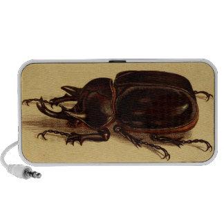 Rhinoceros Beetles Travelling Speakers