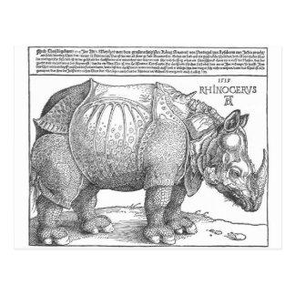 Rhinoceros by Albrecht Durer Postcard
