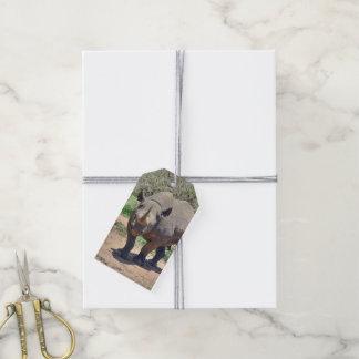 rhinoceros gift tags