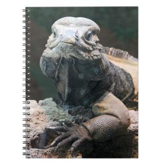 Rhinoceros Iguana Spiral Note Book