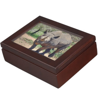 rhinoceros keepsake box