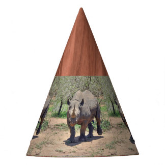 rhinoceros party hat