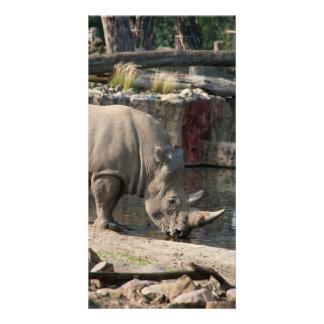 Rhinoceros Personalized Photo Card
