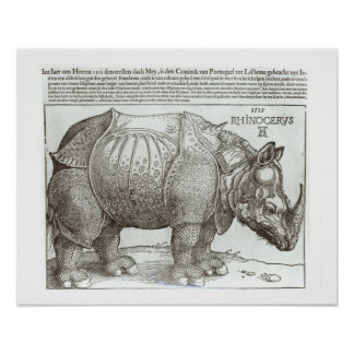 Rhinoceros, print given to Maximilian I (1459-1519