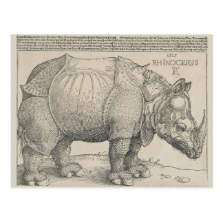 Rhinoceros, Woodcut by Albrecht Durer Postcard