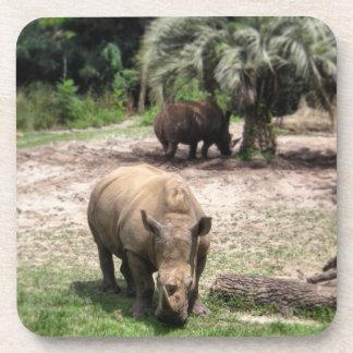 Rhinos on Safari Coasters